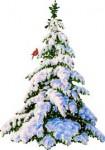 imagesCAD5H57Isapin de noel neige.jpg